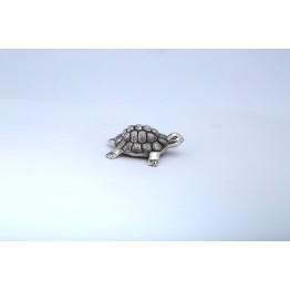 Oxodize Tortoise